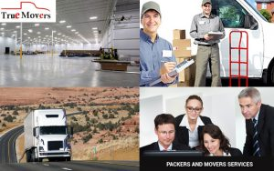 best packers and movers Truemovers